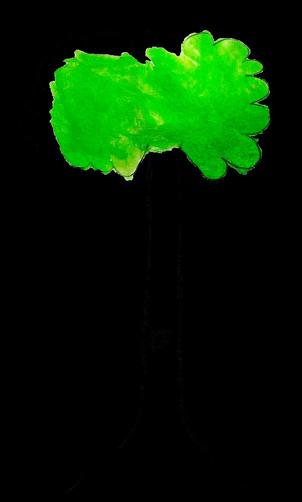 Atelier MP3, Arbre avec frondaison verte, février 2021.