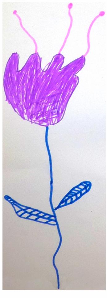 Assim, fleur violette, novembre 2020.