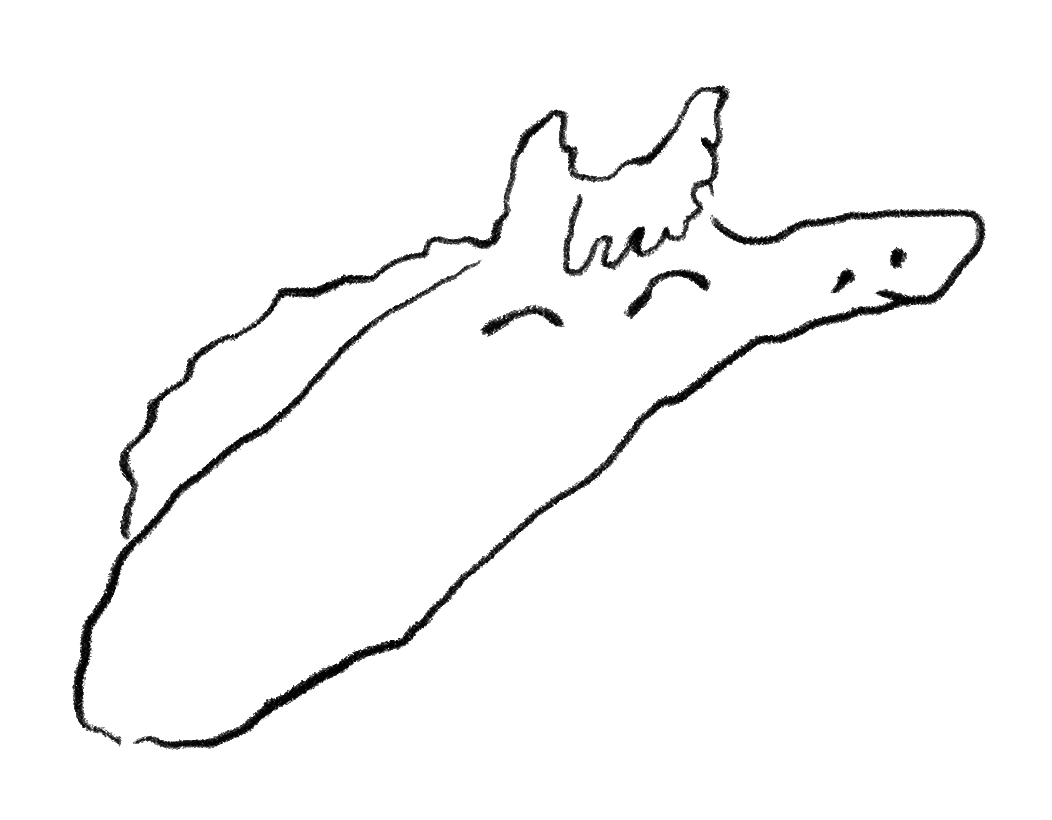 Atelier MP3, Cheval, mars 2021.