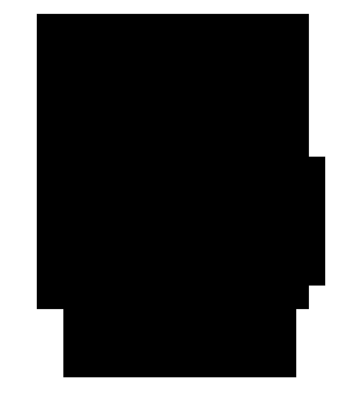 Atelier MP3, Tête de lion, mars 2021.